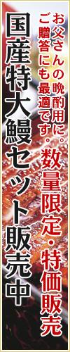 「鯉家のおやじセット」九州産特大鰻1尾+肝煮1パック